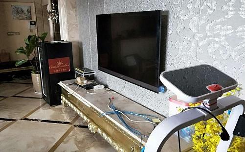 上海枫林路雷鸟电视维修快速上门服务