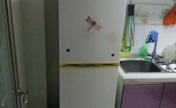 烟台芝罘区三星冰箱维修及压缩机等维修电话
