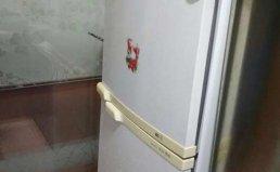 成都双流县TCL冰箱维修及上门服务